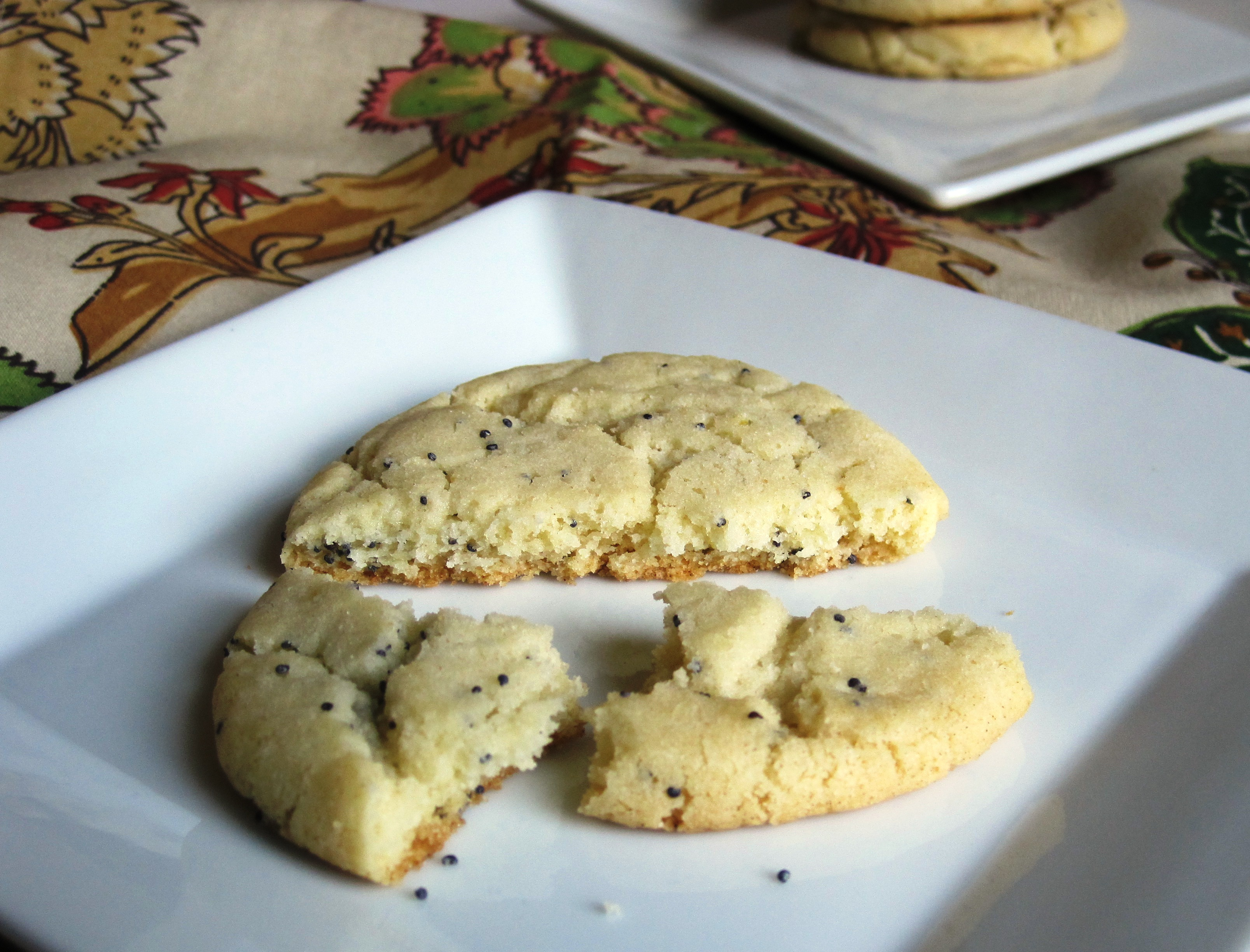 Lemon Poppy Thins » Lemon Poppy Thins broken cookie